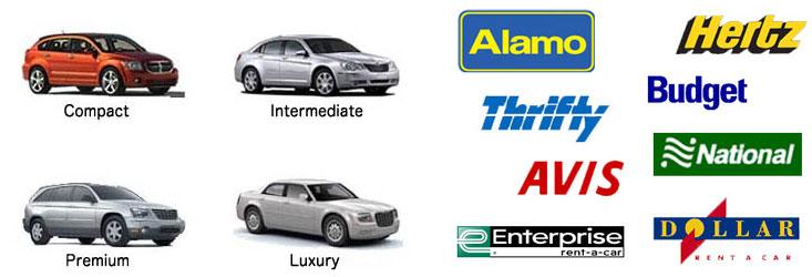 Avis Car Rental Las Vegas